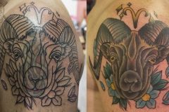 ivo_cover_up-10