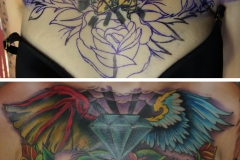 ivo_cover_up-2